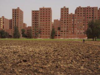 NL28: Food Territories: Losing Ground to Urbanization