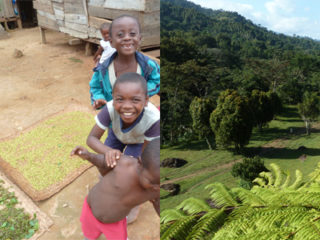NL28: Erhalt von Ökosystemdienstleistungen und Armutslinderung in global vernetzten Landschaftssystemen
