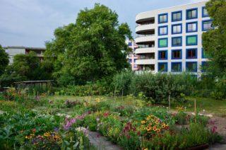 Ersatzneubau in der Wohnsiedlung Else Züblin (2012) der gemeinnützigen Wohnbaugenossenschaft Sunnige Hof in Zürich. © Roman Streit