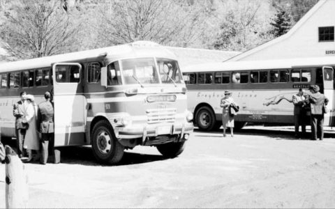 Greyhound Busse bei Gorge Inn, 1952 (CC BY 2.0 by Seattle Municipal Archives via flickr)