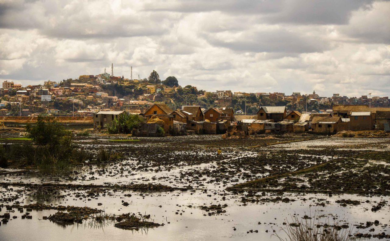 View of the agro-urban landscape of Antananarivo © by Rod Waddington